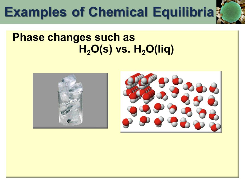 Phase changes such as H 2 O(s) vs. H 2 O(liq) Examples of Chemical Equilibria