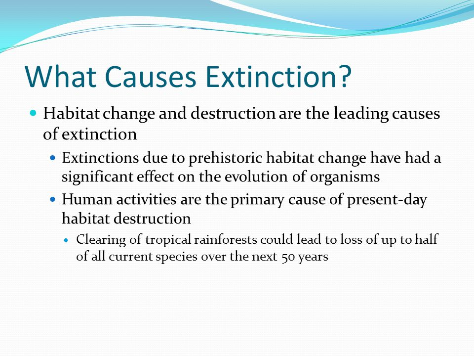 What Causes Extinction? Habitat change and destruction are the leading causes of extinction Extinctions due to prehistoric habitat change have had a s