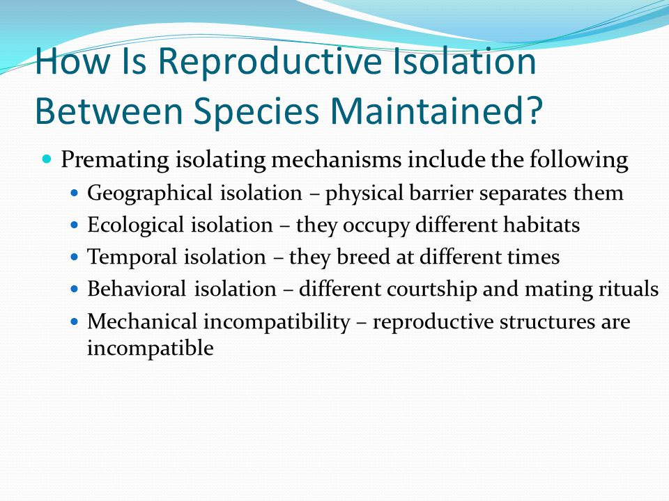 How Is Reproductive Isolation Between Species Maintained? Premating isolating mechanisms include the following Geographical isolation – physical barri