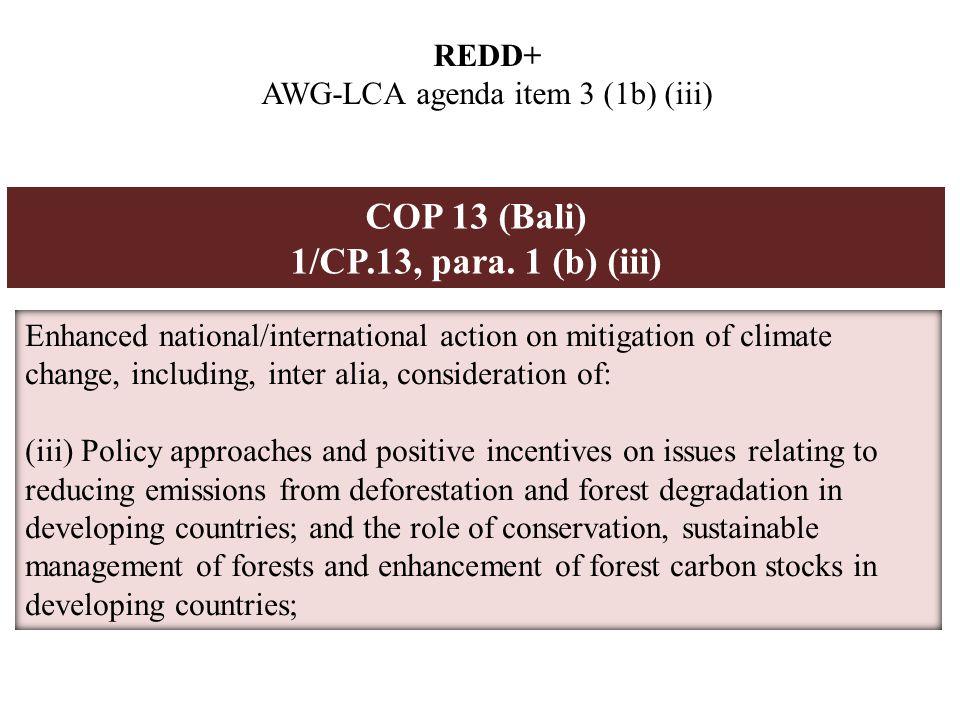 REDD+ AWG-LCA agenda item 3 (1b) (iii) COP 13 (Bali) 1/CP.13, para.