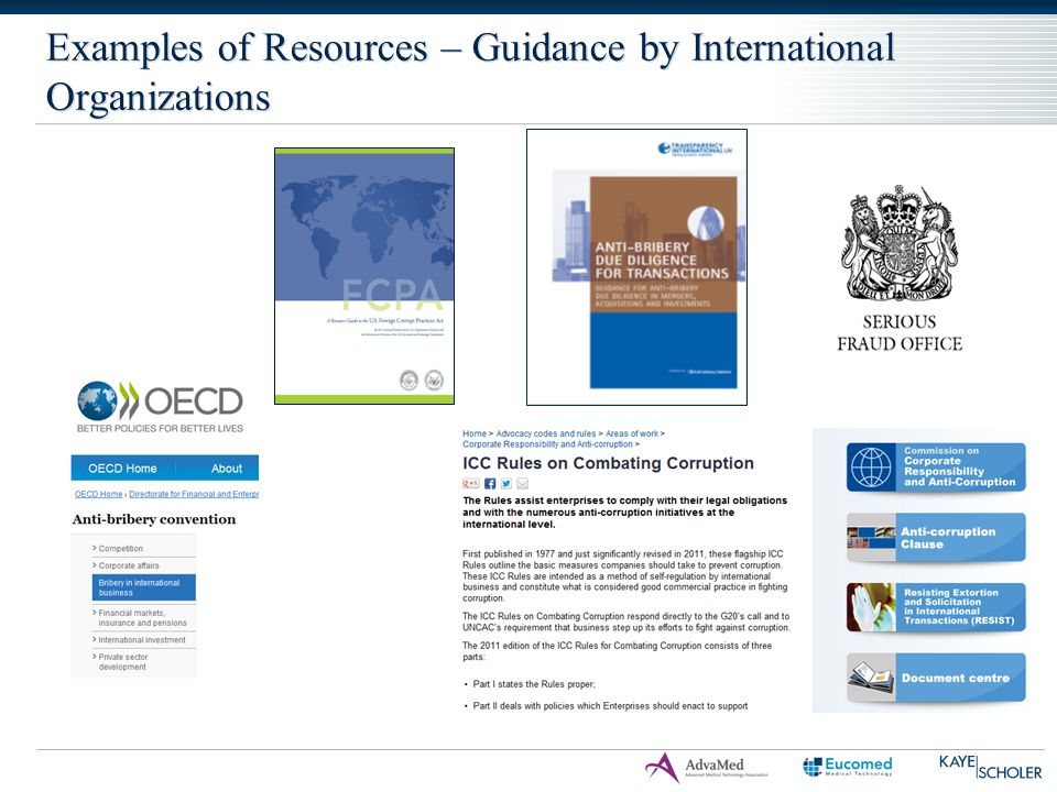 Examples of Resources – Guidance by International Organizations