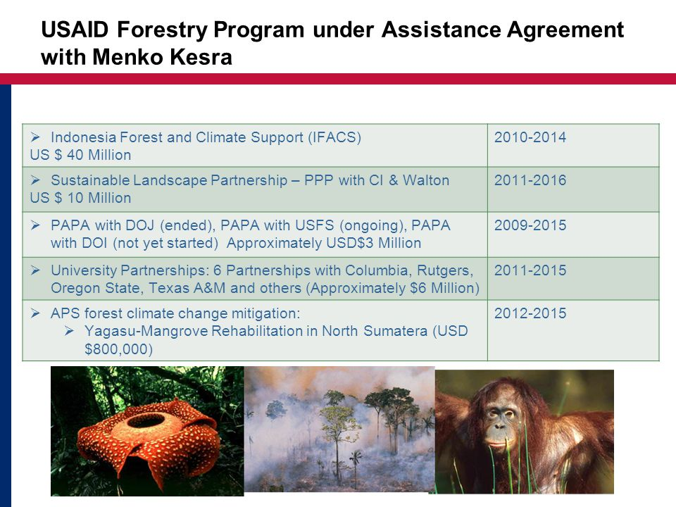 USAID Forestry Program under Assistance Agreement with Menko Kesra  Indonesia Forest and Climate Support (IFACS) US $ 40 Million 2010-2014  Sustainable Landscape Partnership – PPP with CI & Walton US $ 10 Million 2011-2016  PAPA with DOJ (ended), PAPA with USFS (ongoing), PAPA with DOI (not yet started) Approximately USD$3 Million 2009-2015  University Partnerships: 6 Partnerships with Columbia, Rutgers, Oregon State, Texas A&M and others (Approximately $6 Million) 2011-2015  APS forest climate change mitigation:  Yagasu-Mangrove Rehabilitation in North Sumatera (USD $800,000) 2012-2015