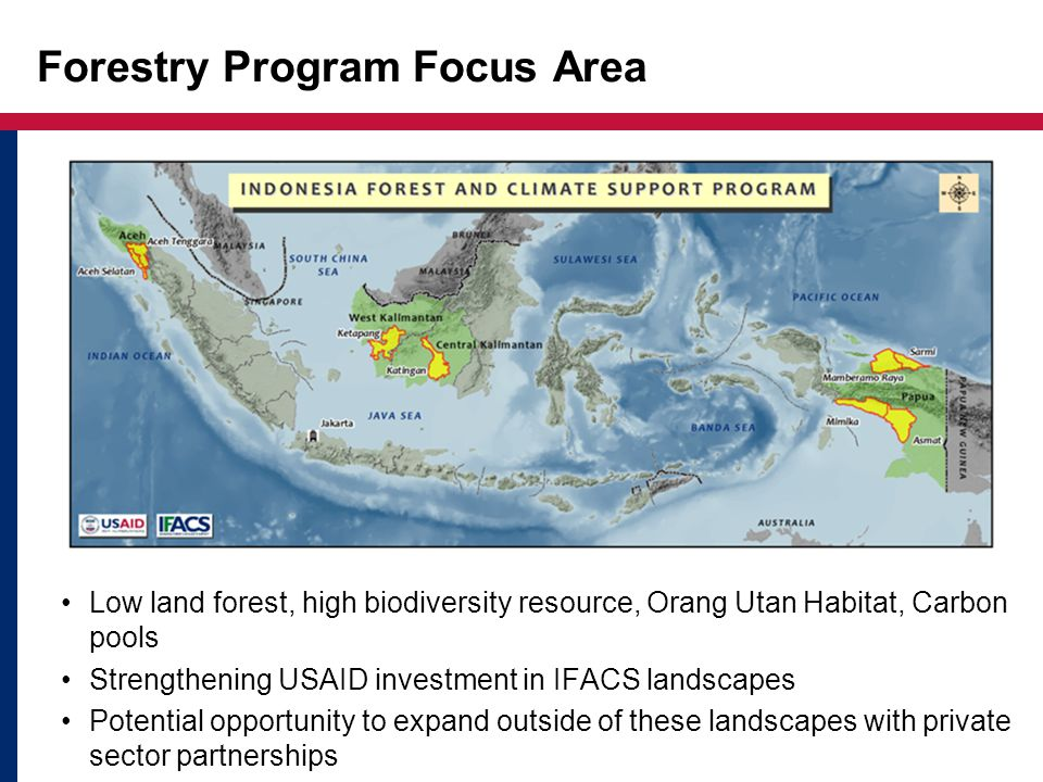Forestry Program Focus Area Low land forest, high biodiversity resource, Orang Utan Habitat, Carbon pools Strengthening USAID investment in IFACS landscapes Potential opportunity to expand outside of these landscapes with private sector partnerships
