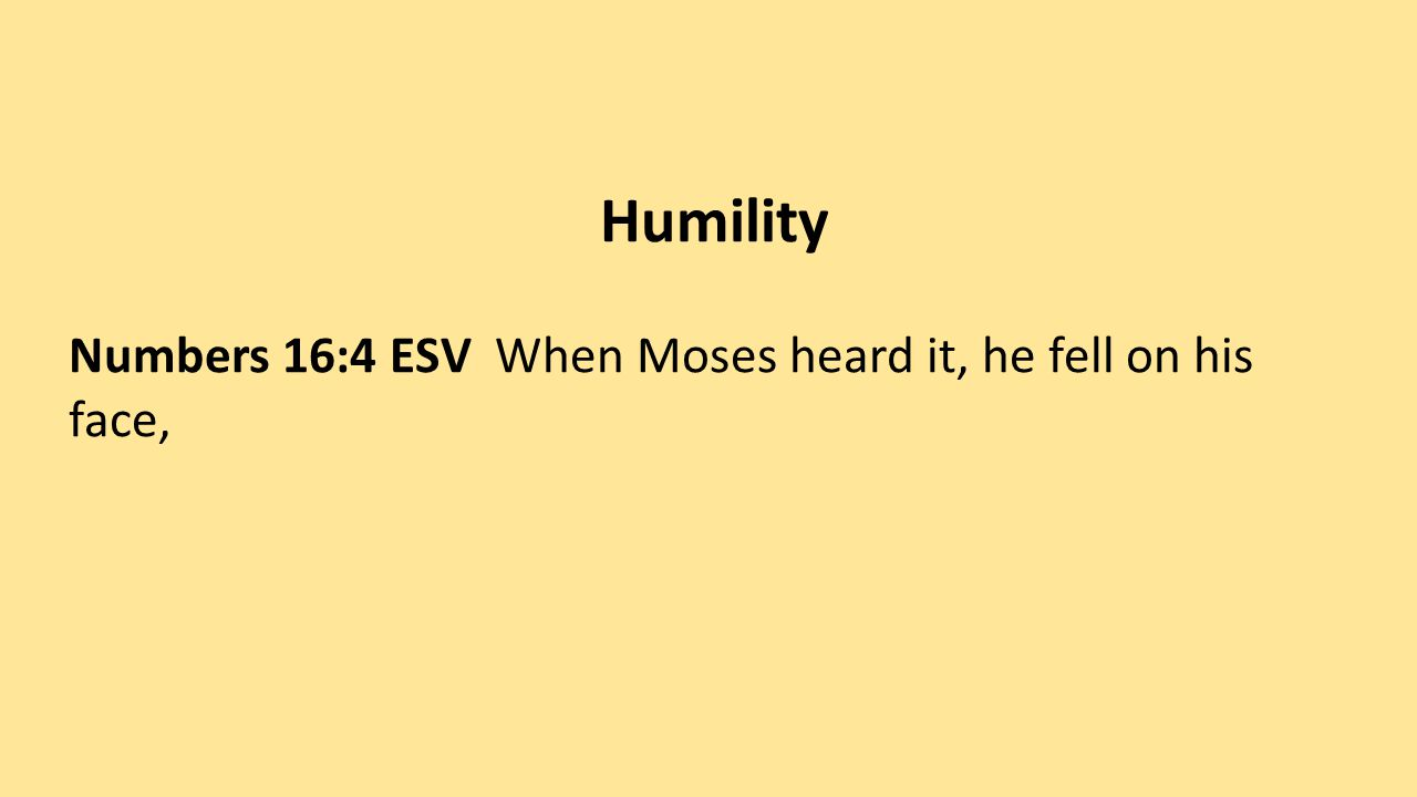 Let God decide – seek counsel from God Numbers 16:5-7 ESV (5) and he said to Korah and all his company, In the morning the LORD will show who is his, and who is holy, and will bring him near to him.