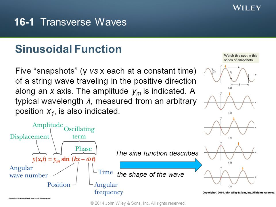 """16-1 Transverse Waves Sinusoidal Function The sine function describes the shape of the wave Five """"snapshots"""" (y vs x each at a constant time) of a str"""