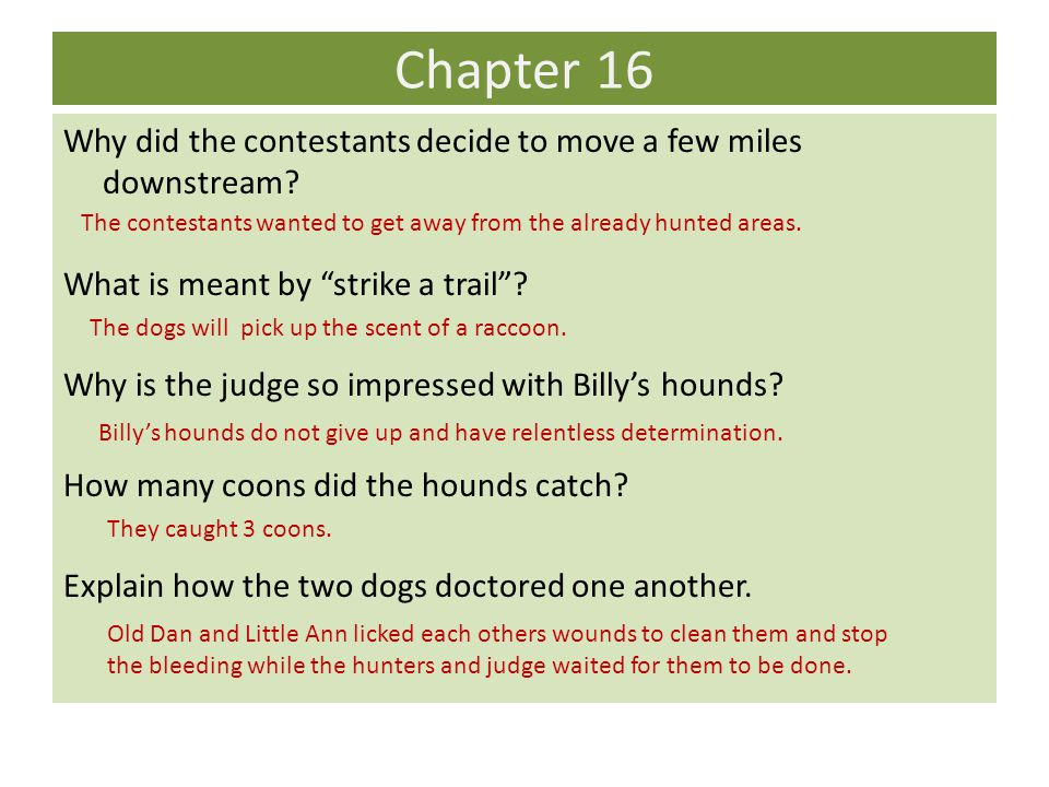 Chapter 16 Why did the contestants decide to move a few miles downstream.