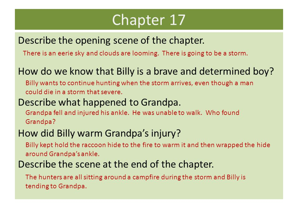 Chapter 17 Describe the opening scene of the chapter.