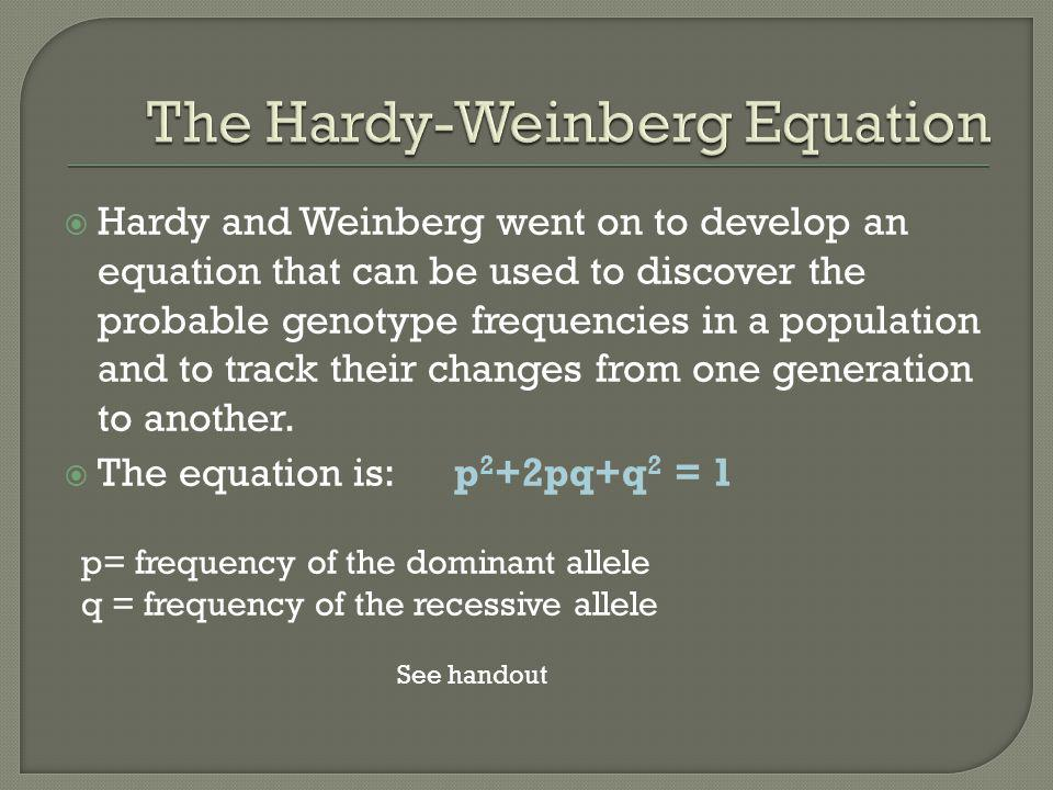  Hardy and Weinberg went on to develop an equation that can be used to discover the probable genotype frequencies in a population and to track their