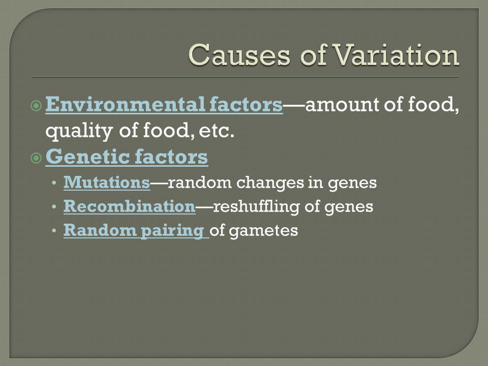  Environmental factors—amount of food, quality of food, etc.  Genetic factors Mutations—random changes in genes Recombination—reshuffling of genes R