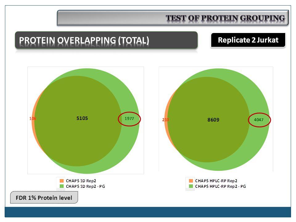 Replicate 2 Jurkat FDR 1% Protein level