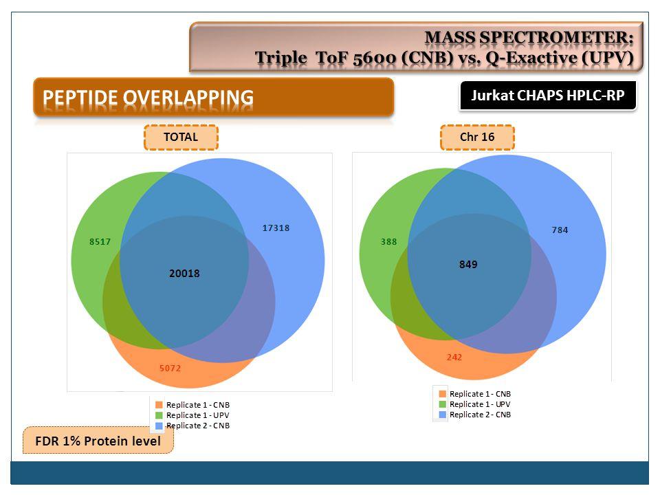 FDR 1% Protein level TOTALChr 16 Jurkat CHAPS HPLC-RP