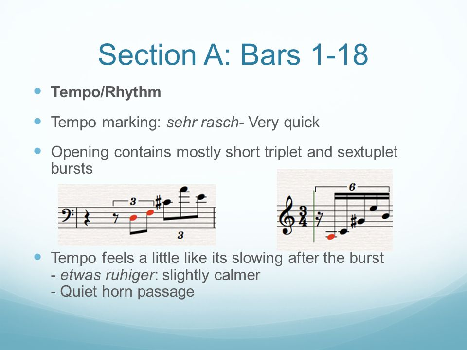 Section A: Bars 1-18 Tempo/Rhythm Tempo marking: sehr rasch- Very quick Opening contains mostly short triplet and sextuplet bursts Tempo feels a littl