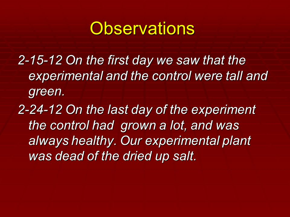 Observations 2-15-12 On the first day we saw that the experimental and the control were tall and green.