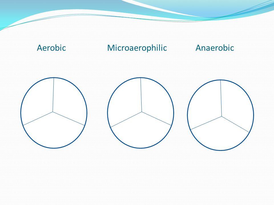 Aerobic Microaerophilic Anaerobic