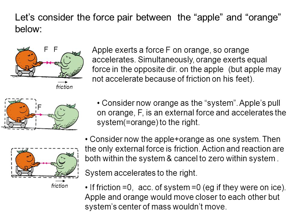 Let's consider the force pair between the apple and orange below: Apple exerts a force F on orange, so orange accelerates.