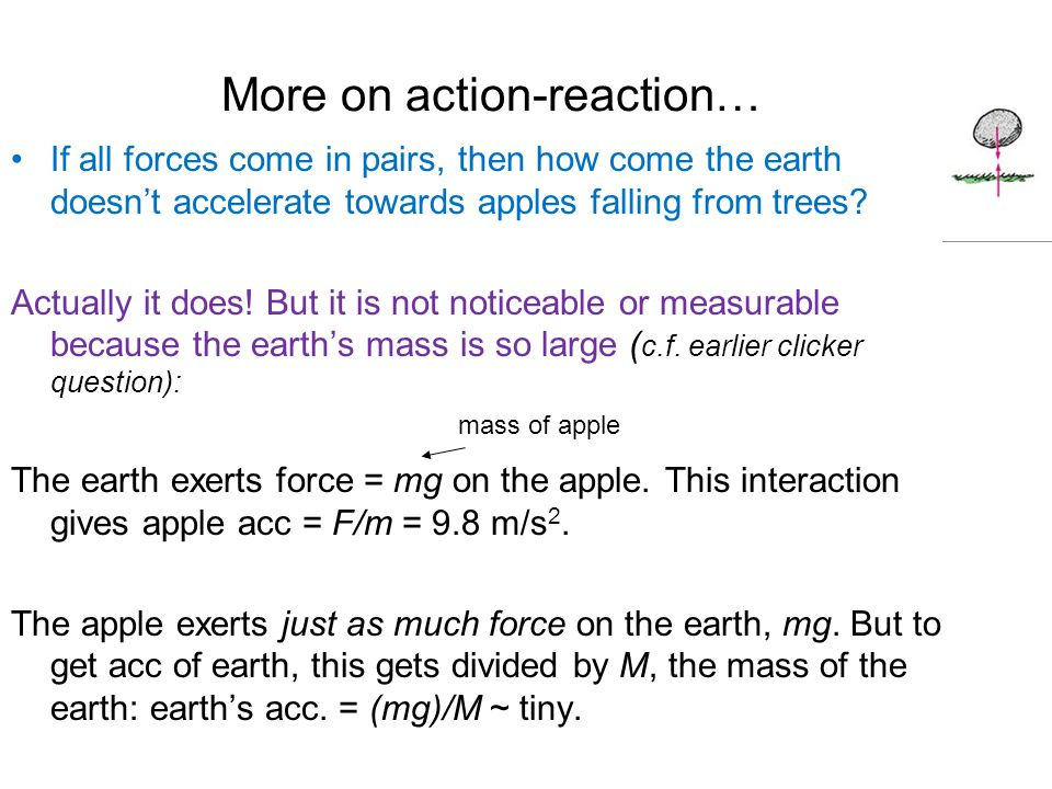 More on action-reaction… If all forces come in pairs, then how come the earth doesn't accelerate towards apples falling from trees.