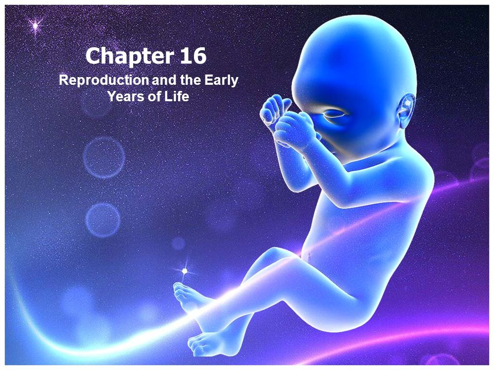 Chapter 16 Reproduction and the Early Years of Life