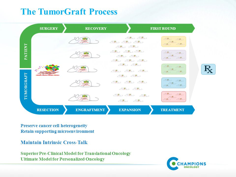 TUMORGRAFT PATIENT FIRST ROUND EXPANSIONTREATMENT RECOVERY ENGRAFTMENTRESECTION SURGERY The TumorGraft Process Preserve cancer cell heterogeneity Retain supporting microenvironment Maintain Intrinsic Cross-Talk Superior Pre-Clinical Model for Translational Oncology Ultimate Model for Personalized Oncology