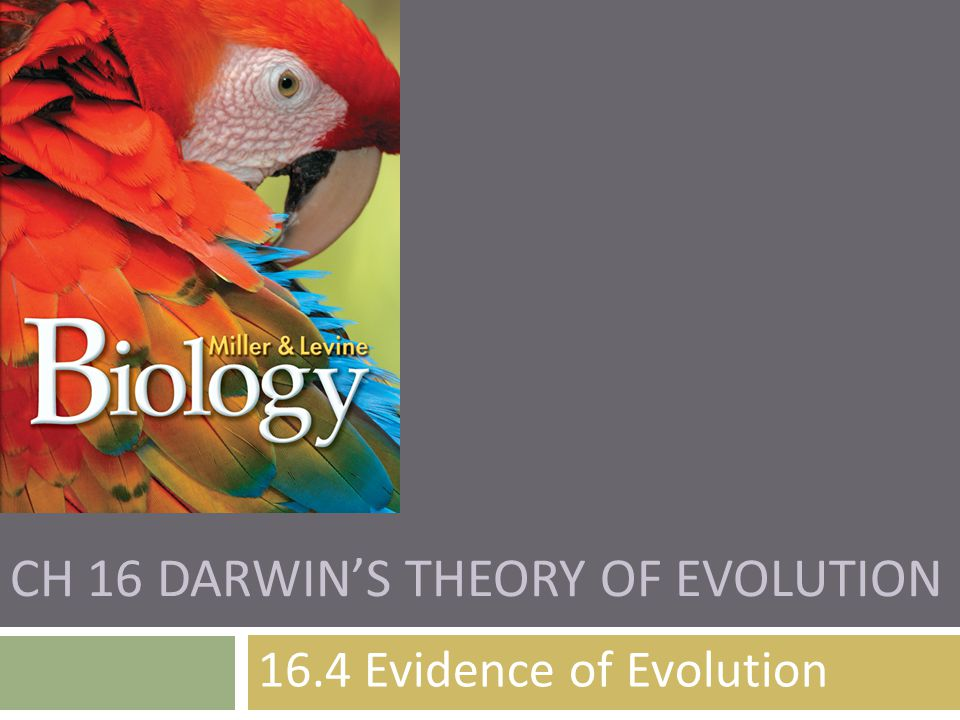 CH 16 DARWIN'S THEORY OF EVOLUTION 16.4 Evidence of Evolution