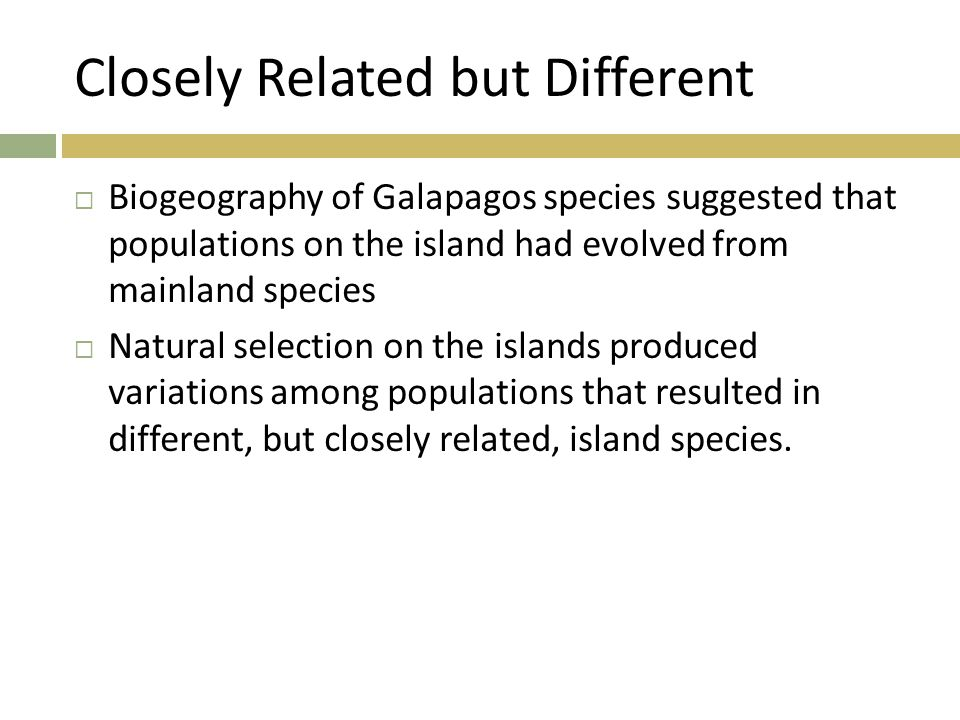 Closely Related but Different  Biogeography of Galapagos species suggested that populations on the island had evolved from mainland species  Natural