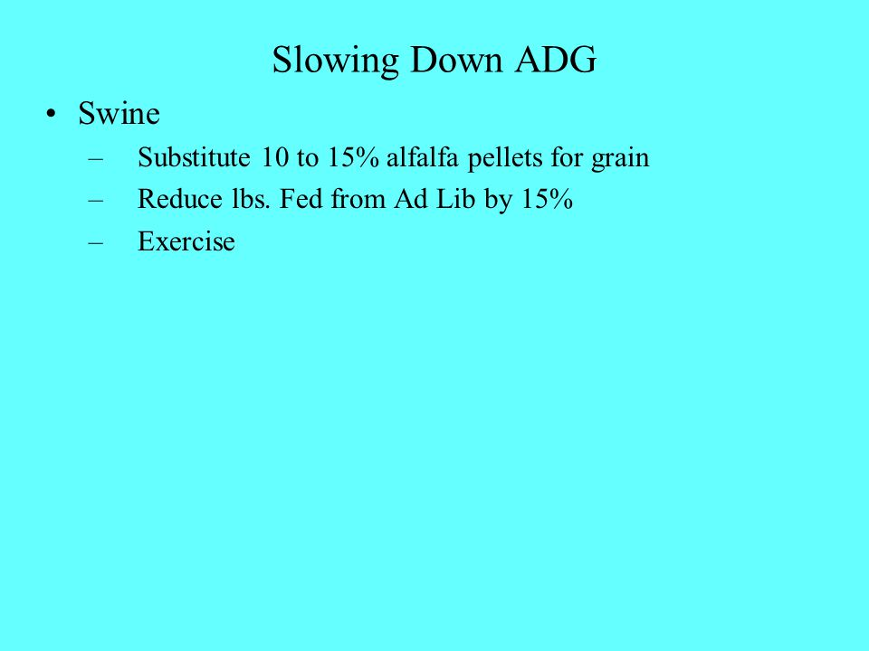 Slowing Down ADG Swine – Substitute 10 to 15% alfalfa pellets for grain – Reduce lbs. Fed from Ad Lib by 15% – Exercise