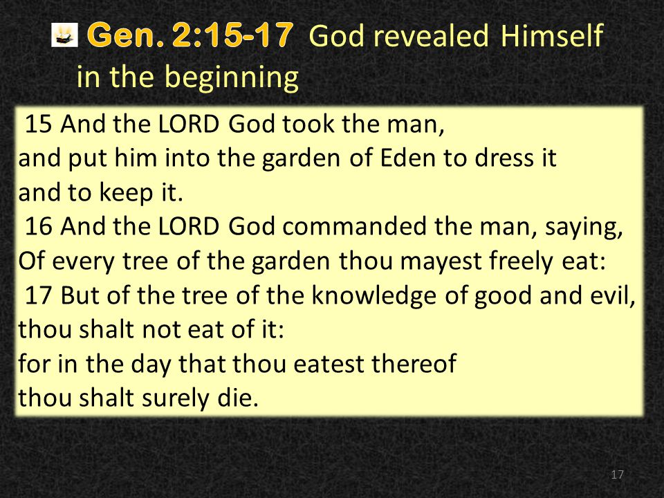 17 15 And the LORD God took the man, and put him into the garden of Eden to dress it and to keep it.