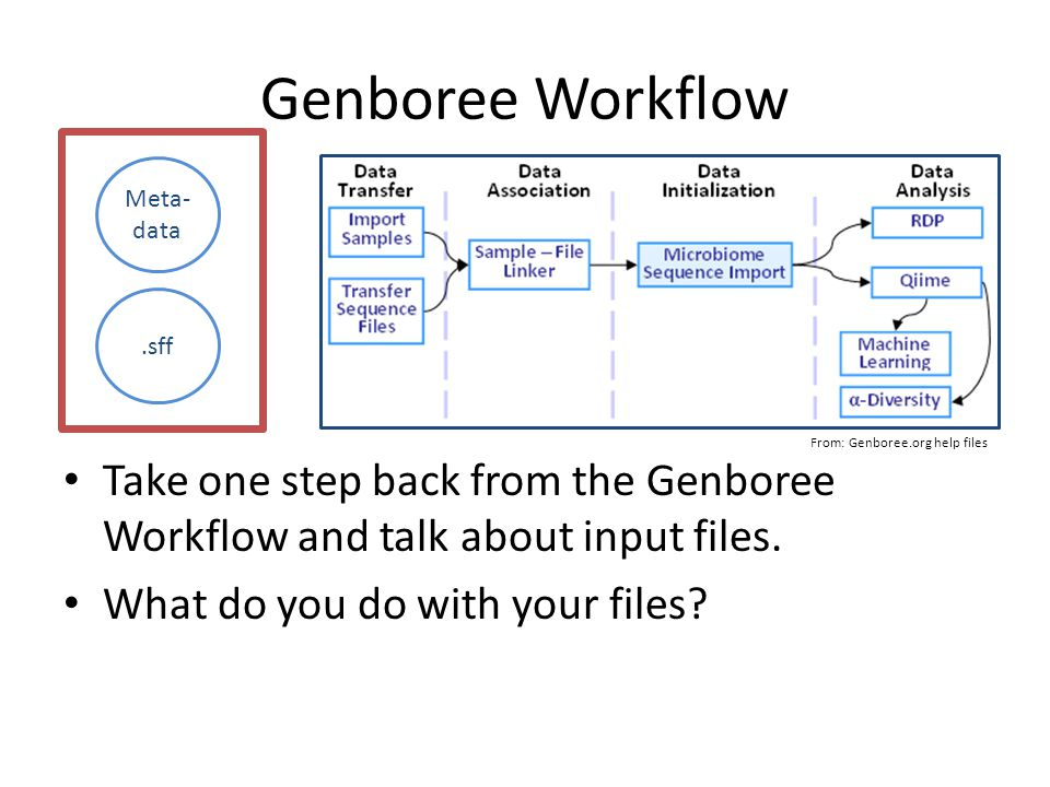 Genboree Workflow Take one step back from the Genboree Workflow and talk about input files.