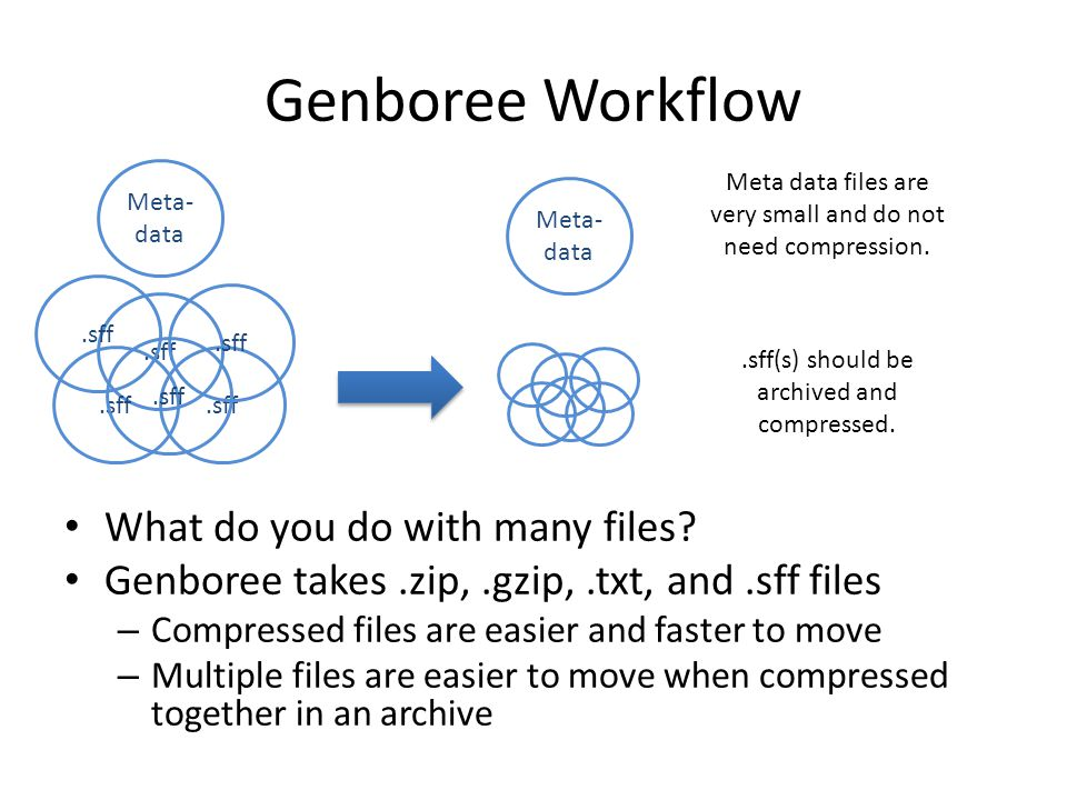 Genboree Workflow What do you do with many files.