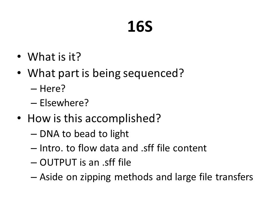 16S What is it. What part is being sequenced. – Here.