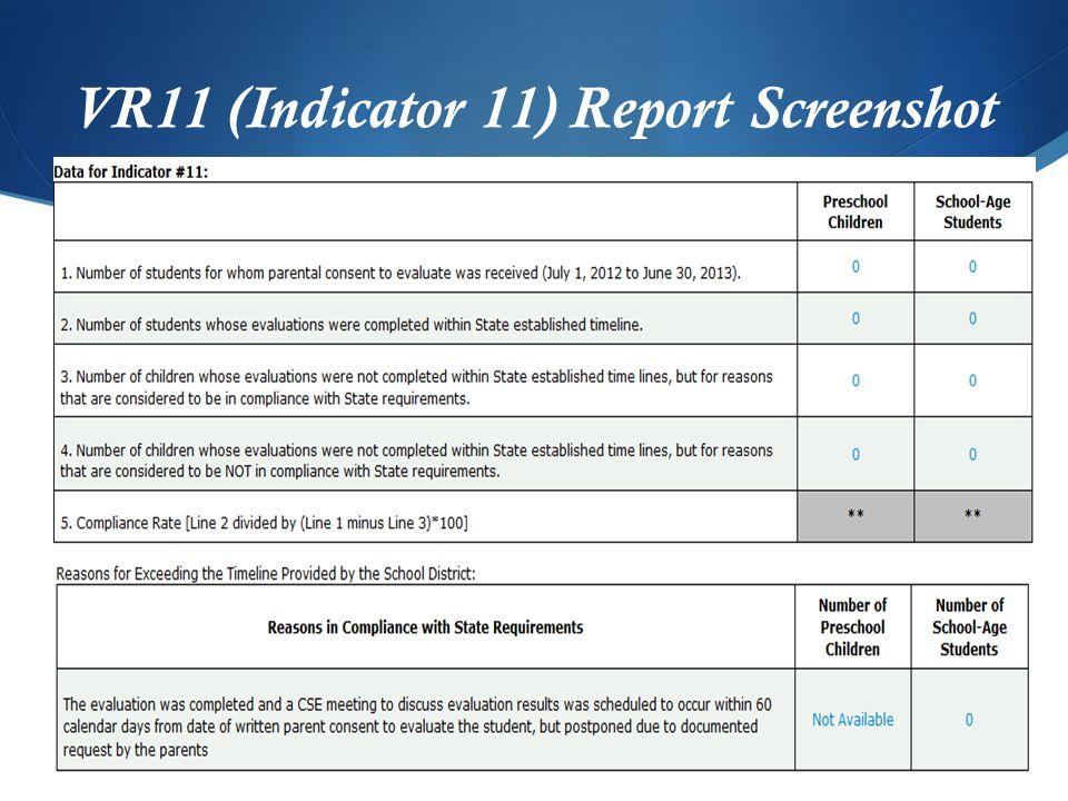 VR11 (Indicator 11) Report Screenshot