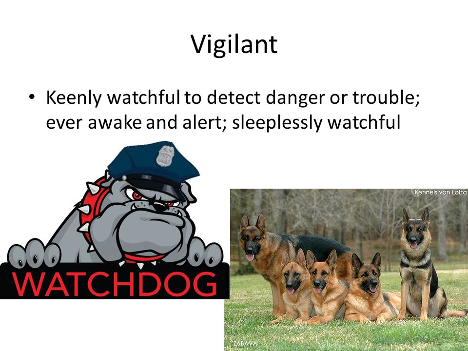 Vigilant Keenly watchful to detect danger or trouble; ever awake and alert; sleeplessly watchful