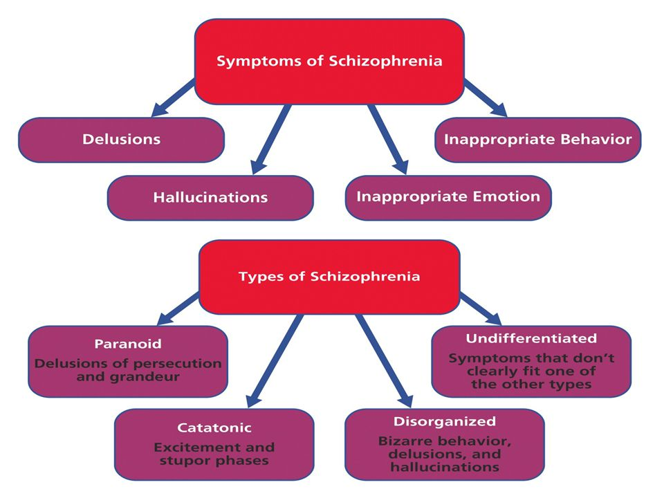 Chronic and Acute Schizophrenia When schizophrenia is slow to develop (chronic/process) recovery is doubtful.