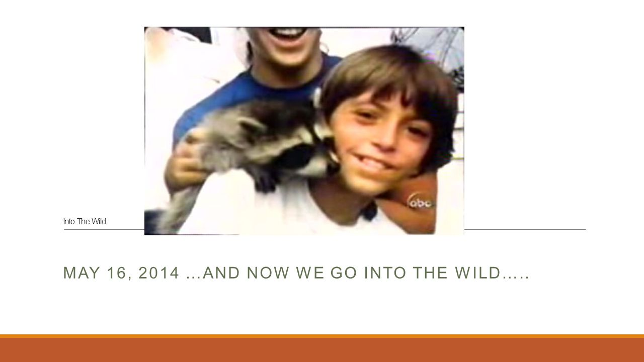 Into The Wild MAY 16, 2014 …AND NOW WE GO INTO THE WILD…..