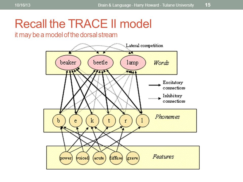 Recall the TRACE II model it may be a model of the dorsal stream 10/16/13Brain & Language - Harry Howard - Tulane University 15
