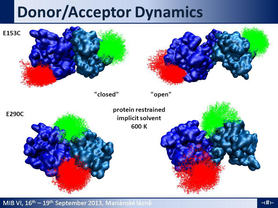 MIB VI, 16 th – 19 th September 2013, Mariánské lázně -20- Donor/Acceptor Dynamics E153C E290C closed open protein restrained implicit solvent 600 K