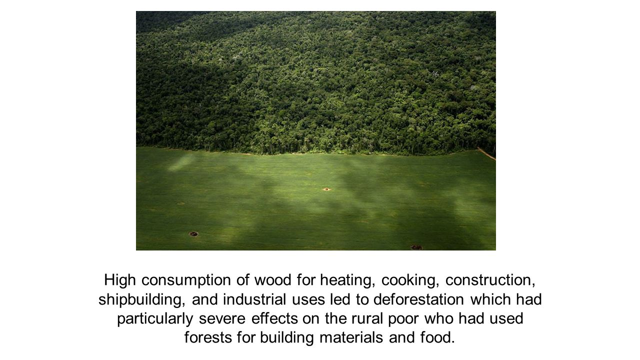 High consumption of wood for heating, cooking, construction, shipbuilding, and industrial uses led to deforestation which had particularly severe effects on the rural poor who had used forests for building materials and food.