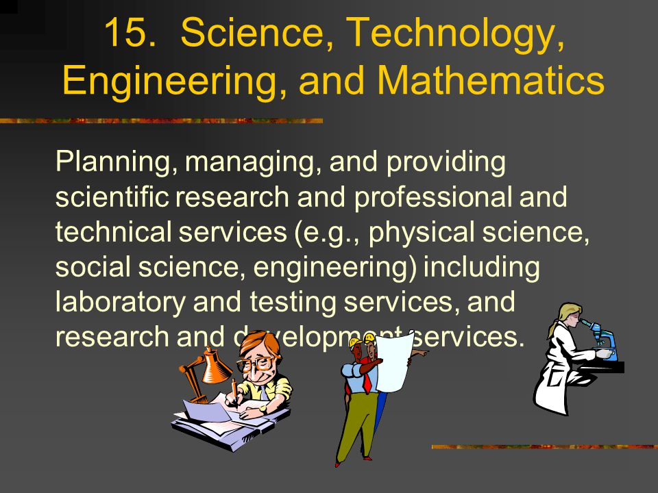15. Science, Technology, Engineering, and Mathematics Planning, managing, and providing scientific research and professional and technical services (e