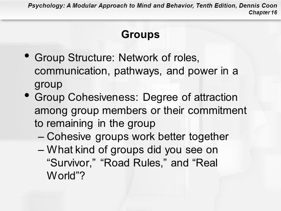 Psychology: A Modular Approach to Mind and Behavior, Tenth Edition, Dennis Coon Chapter 16 Groups Group Structure: Network of roles, communication, pa