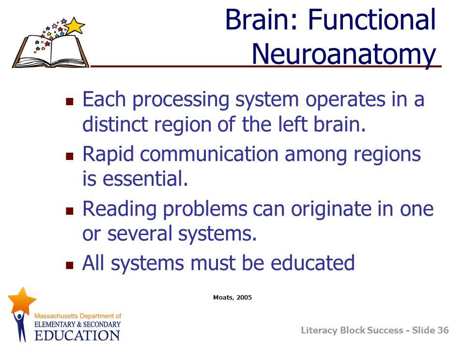 Literacy Block Success - Slide 36 Brain: Functional Neuroanatomy Each processing system operates in a distinct region of the left brain.