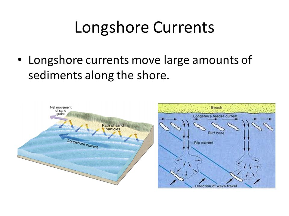 Longshore Currents Longshore currents move large amounts of sediments along the shore.