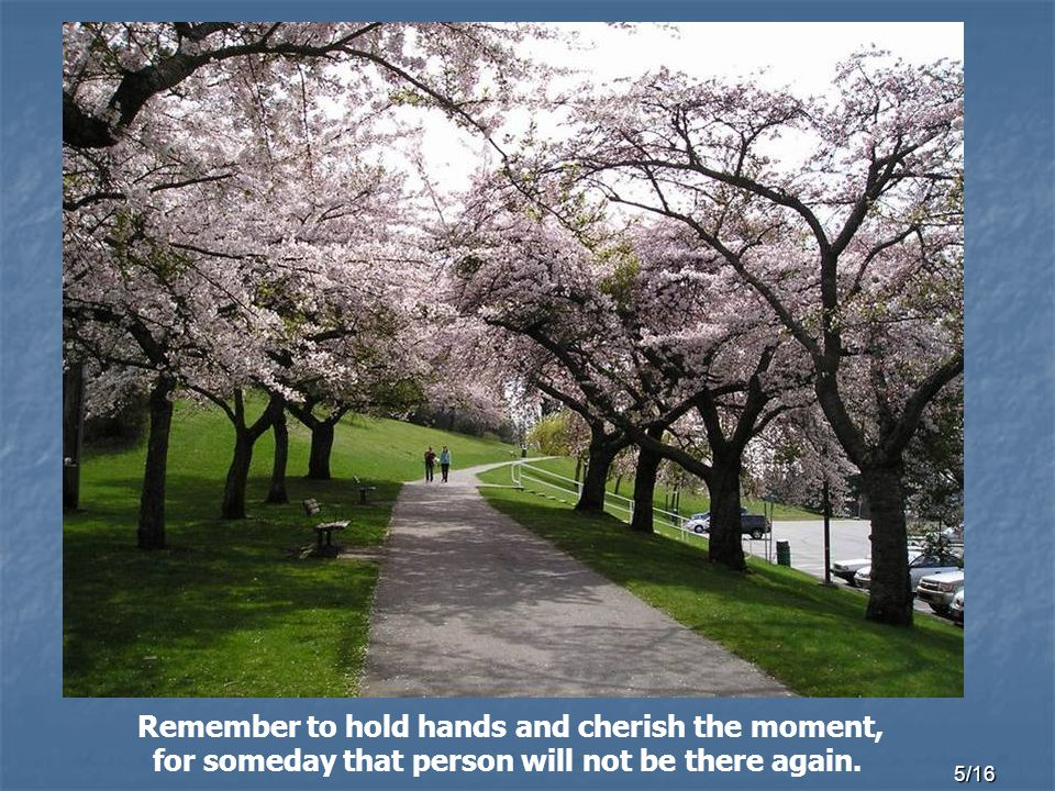 5/16 Remember to hold hands and cherish the moment, for someday that person will not be there again.