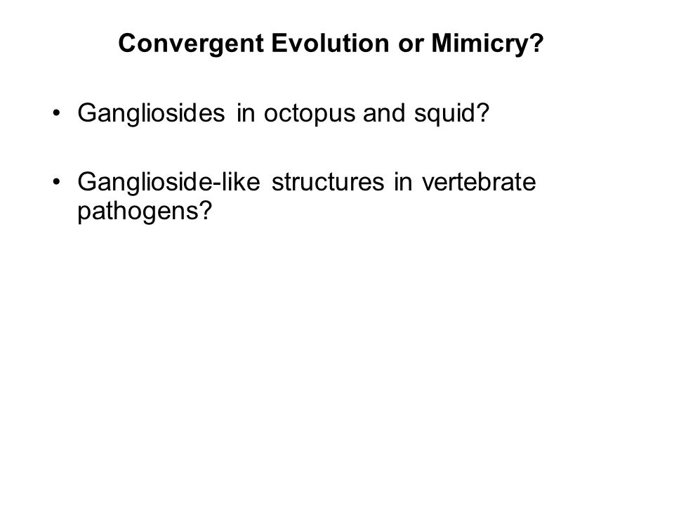 Convergent Evolution or Mimicry.Gangliosides in octopus and squid.