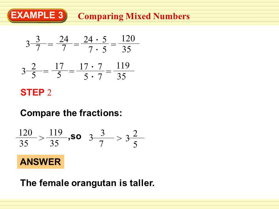 EXAMPLE 3 Comparing Mixed Numbers 3 3 7 = 24 7 = 24 5 7 5 = 120 35 3 2 5 = 17 5 = 17 7 5 7 = 119 35 The female orangutan is taller.