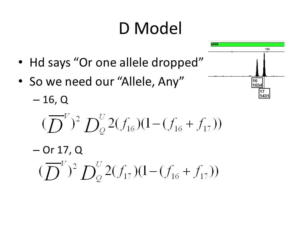 D Model Hd says Or one allele dropped So we need our Allele, Any – 16, Q – Or 17, Q