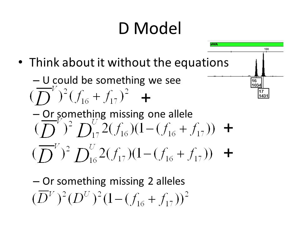 D Model Think about it without the equations – U could be something we see – Or something missing one allele – Or something missing 2 alleles + + +