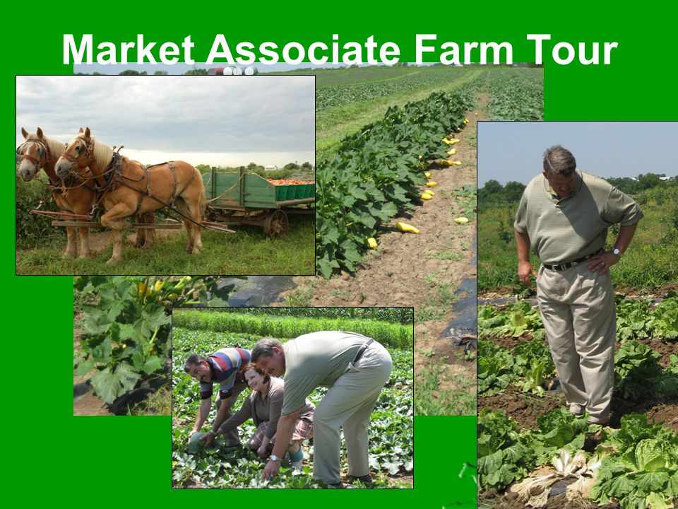 Market Associate Farm Tour