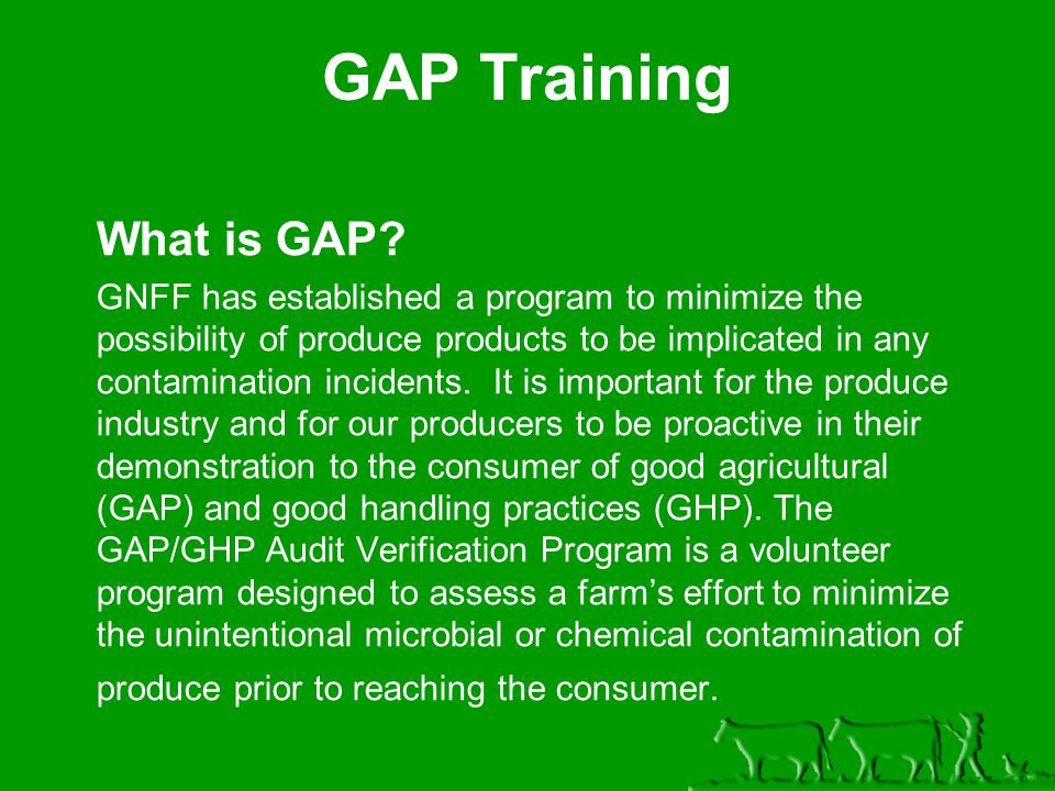 What is GAP.