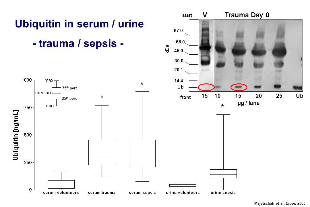 97.0 66.0 45.0 30.0 20.1 14.4 kDa 1510152025Ub front start Ub V Trauma Day 0 µg / lane Ubiquitin in serum / urine - trauma / sepsis - Majetschak et al.