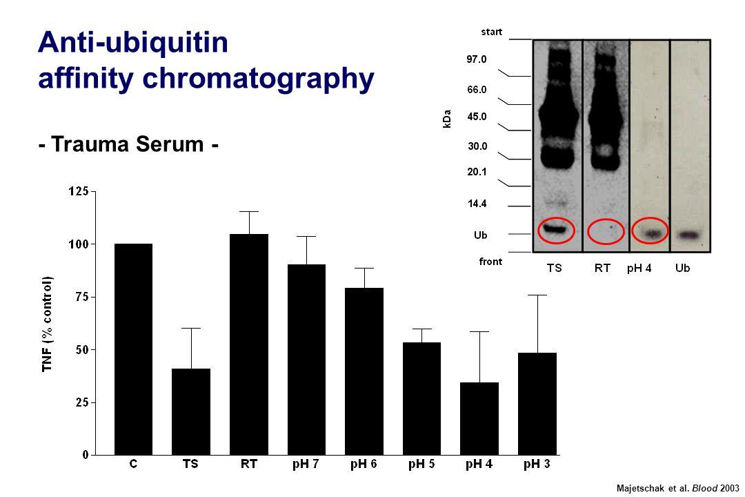 Anti-ubiquitin affinity chromatography - Trauma Serum - Majetschak et al. Blood 2003