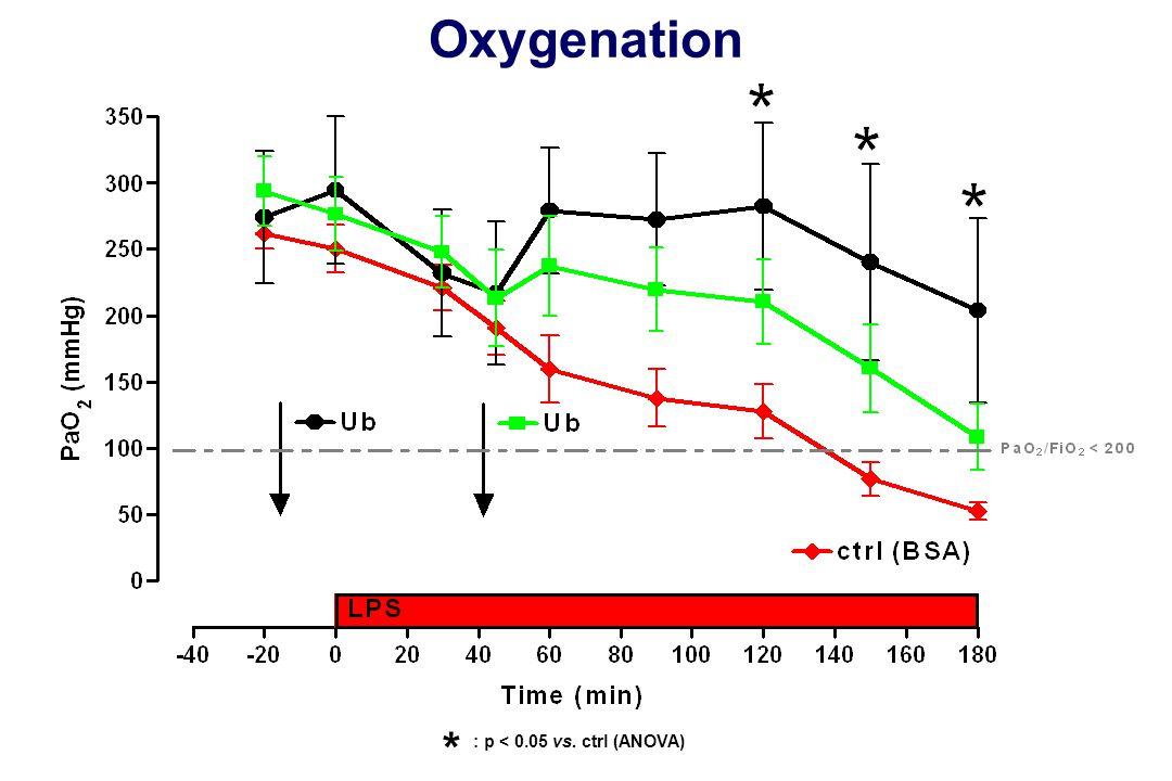 Oxygenation * : p < 0.05 vs. ctrl (ANOVA)